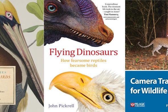 Tet Zoo Bookshelf November 2016: of Flying Dinosaurs, Extraordinary Birds and Camera Traps