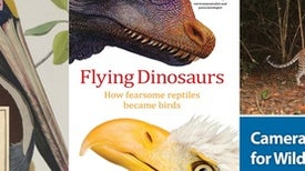Tet Zoo Bookshelf November 2016: of Flying Dinosaurs, Extraordinary Birds and Camera Traps