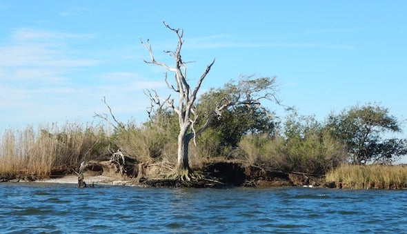 Rising Seas are Swamping Our Archaeological Heritage