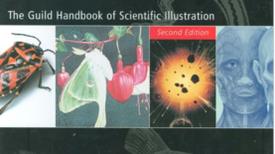 The Path to Scientific Illustration