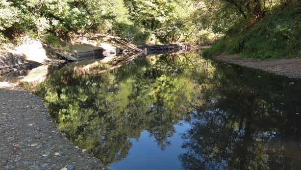 Learning the Language of Rivers, Part 2: The Basics