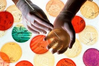Are Antibiotics Damaging Your Family's Health?