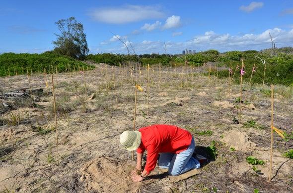 Habitat Restoration Isn't Just for Professionals