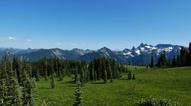 Mount Rainier in One Easy-ish Day: From Mud to Meadows