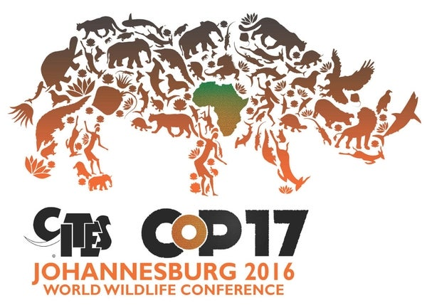 Namibia, Zim lose vote to allow ivory trade - CITES Cop17