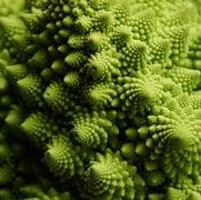 The Top n Math Videos Involving Food