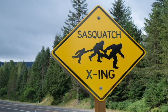 How Chasing Bigfoot Can Lead to Actual Science