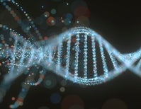Is Our Future Really Written in Our Genes?