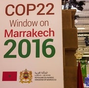 The Trump Taboo at COP 22