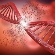 Human Gene Editing: Great Power, Great Responsibility