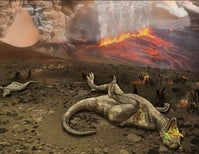 What Really Killed the Dinosaurs?