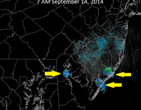 Weather Radar Captures Flocks of Birds Taking Off