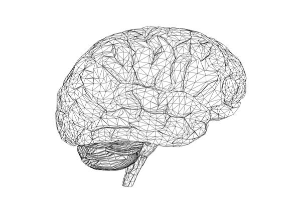 Sleep Locks in Bad Memories--and More from a Giant Brain Fest