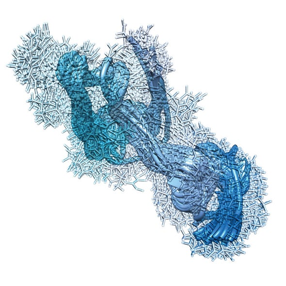 Contemplating a Statinlike Drug to Prevent Alzheimer's