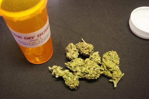 Can Pot-Related Drugs Wean Substance Abusers Off the Hard Stuff?