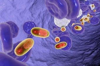 How Nanotech Powers Precision Medicine
