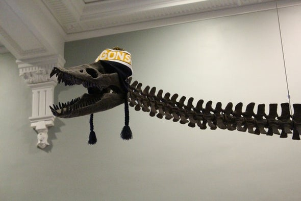 Up to the Neck in Plesiosaurs