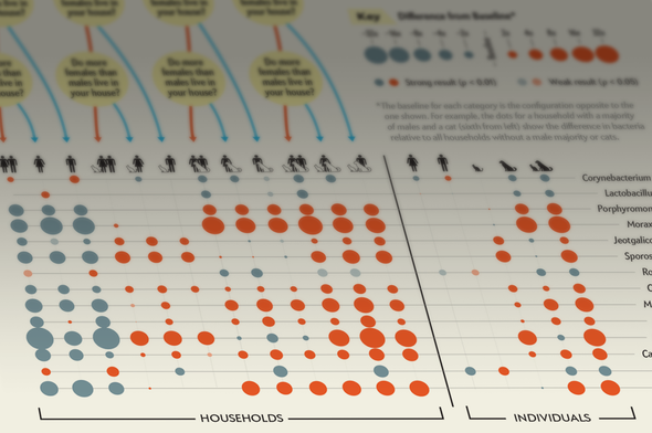 The Evolution of a <i>Scientific American</i> Infographic: Secret Life in Household Dust