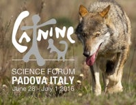 Countdown to the Canine Science Forum