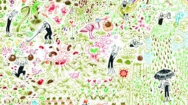A Big Garden: A <i>Where's Waldo?</i> World of Botany and Whimsy