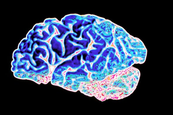 We Need New Biomarkers For Alzheimer S Disease Scientific American