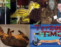Happy 8th birthday Tetrapod Zoology: 2013 in review