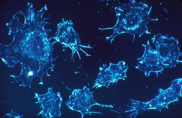 Behind the Scenes of a Radical New Cancer Cure