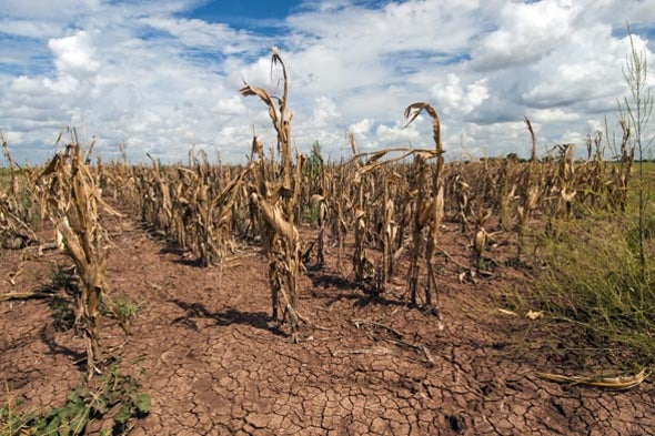 Newly Identified Jet-Stream Pattern Could Imperil Global Food Supplies