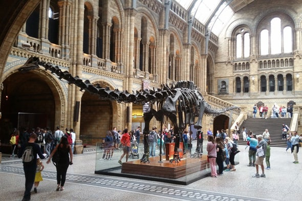 The Natural History Museum at South Kensington