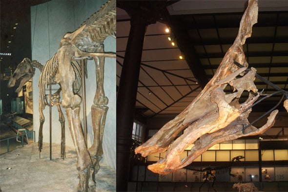 Eberth and Evans's <i>Hadrosaurs</i>, a Book Review, Part 1