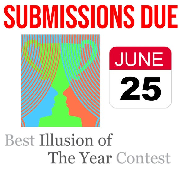 Call for Illusion Submissions: The World's Annual Best Illusion of the Year Contest