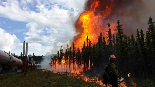 As Alaska Warms, Wildfires Pose a Growing Threat