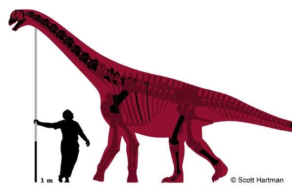 Jurassic Dinosaur Was a Jumbo Shrimp