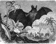 Halloween Horrors: The Spectral Vampire Bat
