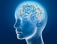What Neuroscience Says about Free Will