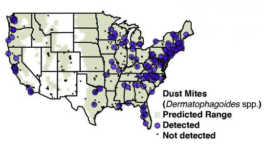 Why Do Dust Mites Seem to Shun the Western U S