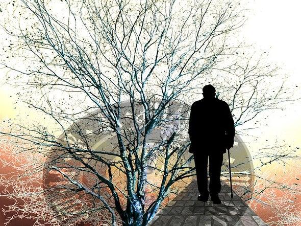 A New Approach to Alzheimer's