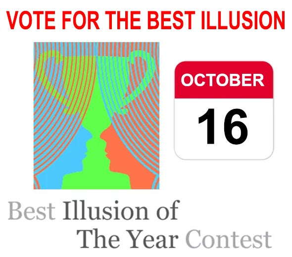 Vote for the Best Illusion of the Year!