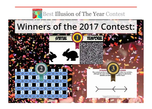 The Best Illusions of the Year