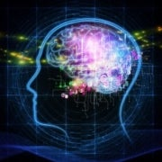 Neuroscientists Break into the Brain to Expose Its Workings