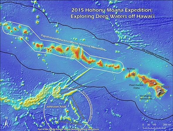 Live Exploration Begins Aug. 1 in Deep Hawaiian Waters