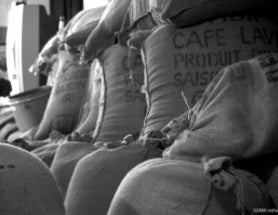 Getting a Fair Share? Assessing The Impact of Fair Trade