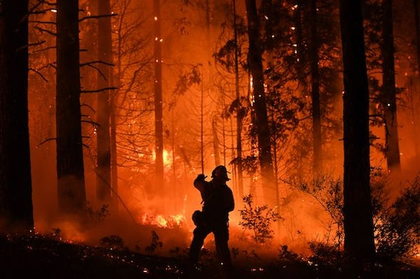 Living with Fire in Northern California