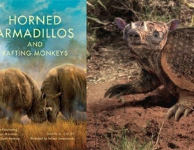 Darin Croft's <i>Horned Armadillos and Rafting Monkeys</i>