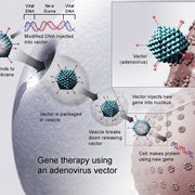Has the Era of Gene Therapy Finally Arrived?