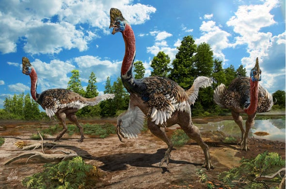 Paleo Profile: The Crested Thief