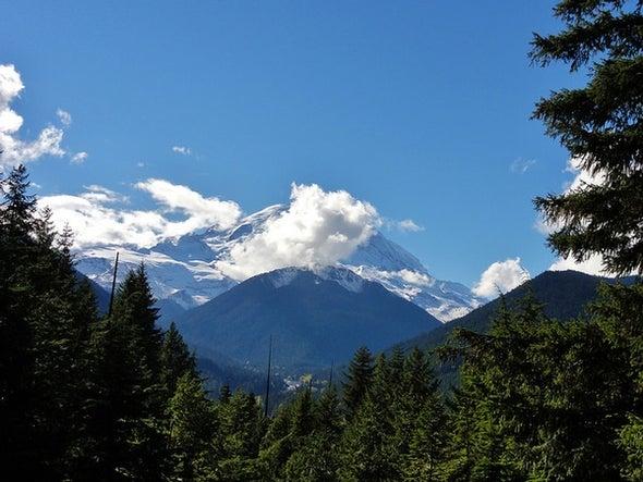 A Delicious Selection of Mount Rainier Photos