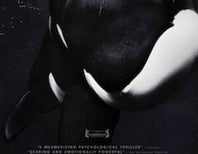 """Blackfish"" Will Air on CNN Tomorrow at 6pm Pacific/9pm Eastern. Watch and Tweet With Us!"