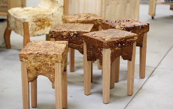 Making Furniture from Fungi