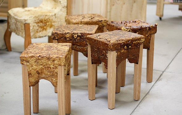 Making Furniture from Fungi